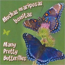 Muchas Mariposas Bonitas (Many Pretty Butterflies)