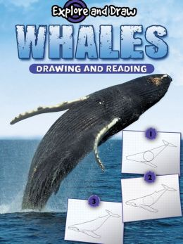 Whales: Drawing and Reading