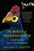 Book Cover Image. Title: The Birds of Pandemonium, Author: Michele Raffin