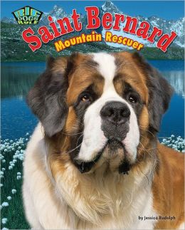 Saint Bernard: Mountain Retriever