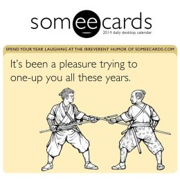 2014 Someecards Box Calendar