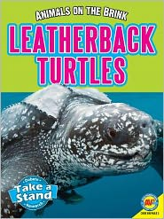 Leatherback Turtles