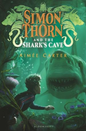Book Simon Thorn and the Shark's Cave