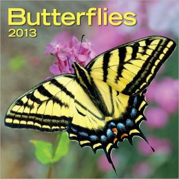 2013 Butterflies Mini Wall Calendars