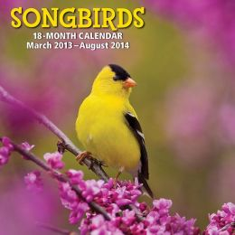 2014 18-Month Songbirds Wall