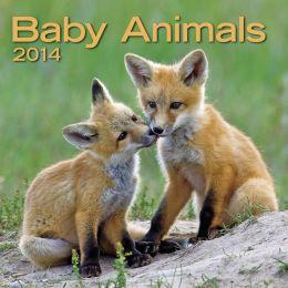 2014 Baby Animals Mini Wall Calendar