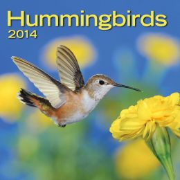 2014 Hummingbirds Mini Wall Calendar