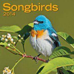 2014 Songbirds Mini Wall Calendar
