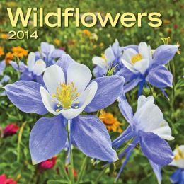 2014 Wildflowers Mini Wall Calendar