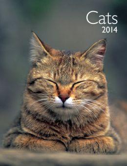 2014 Cats Engagement Calendar