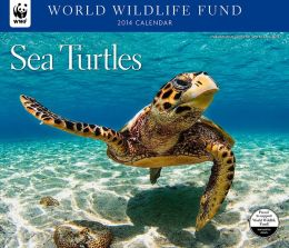 2014 Sea Turtles WWF Wall Calendar