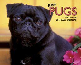2014 Just Pugs Box Calendar