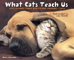 2014 What Cats Teach Us Box Calendar
