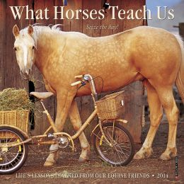 2014 What Horses Teach Us Mini Wall Calendar