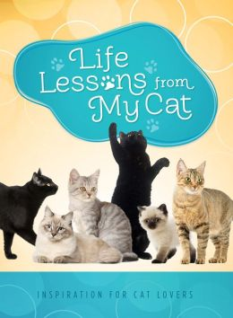 Life Lessons from My Cat: Inspiration for Cat Lovers