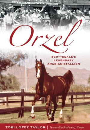 Orzel: Scottsdale's Legendary Arabian Stallion
