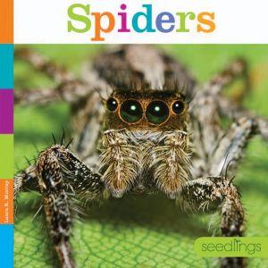 Spiders: Seedlings