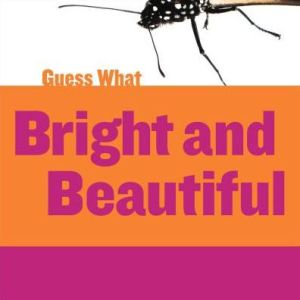 Bright and Beautiful: Butterfly