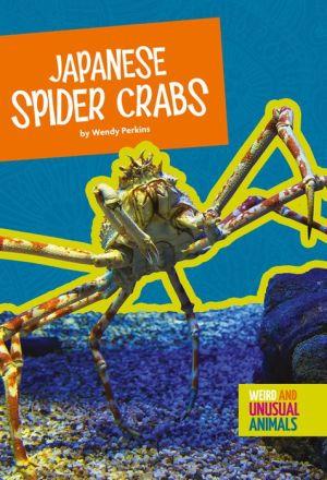 Japanese Spider Crabs