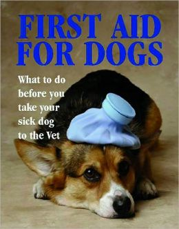 First Aid for Dogs: What to do Before You Take your Dog to the Vet