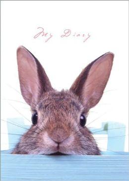 Sneaky Bunny Lock and Key Diary