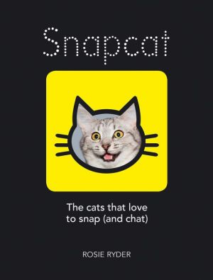 Snapcat: The Cats That Love to Snap (and Chat)