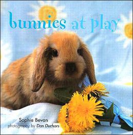 BUNNIES AT PLAY