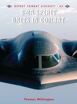 B-2A Spirit Units in Combat