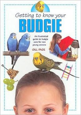 Getting to Know Your Budgie: Illustrated Guide to Budgie Care for New Young Owners