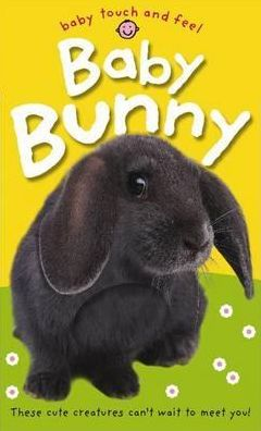 Baby Bunny (Baby Touch and Feel Series)