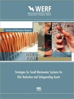 Strategies For Small Wastewater Systems For Risk Reduction And Safeguarding Assets