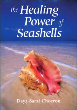 The Healing Power of Seashells: Gifts of the Sea