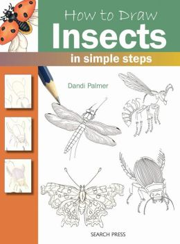 How to Draw Insects in Simple Steps