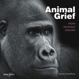 Animal Grief: How Animals Mourn