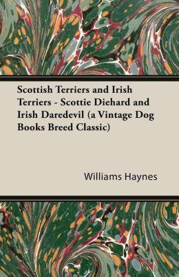 Scottish Terriers And Irish Terriers Scottie Diehard and Irish Daredevil