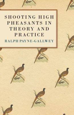 Shooting High Pheasants In Theory And Practice