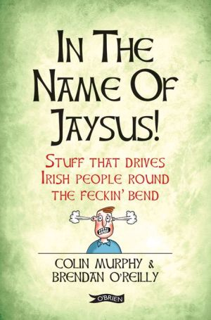In The Name of Jaysus!: Stuff That Drives Irish People Round the Feckin' Bend