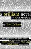 Book Cover Image. Title: A Brilliant Novel in the Works, Author: Yuvi Zalkow