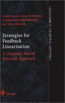 Strategies for Feedback Linearisation: A Dynamic Neural Network Approach