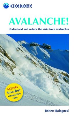 Avalanche!: Assess and reduce risks from Avalanches