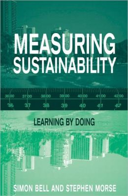 Measuring Sustainability: Learning by Doing