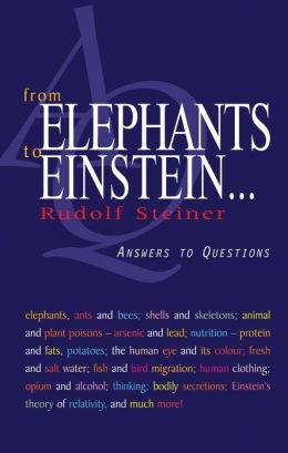 From Elephants to Einstein...: Answers to Questions