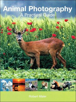 Animal Photography: A Practical Guide