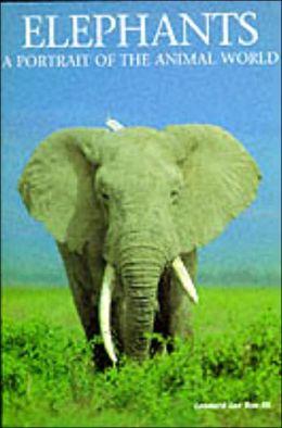 Elephants: A Portrait of the Animal World