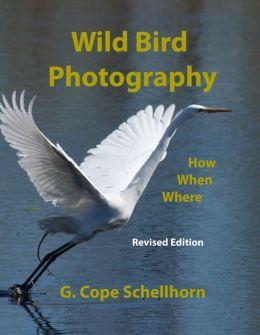 Wild Bird Photography: How, When, Where: ------