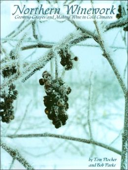 Northern Winework : Growing Grapes and Making Wine in Cold Climates