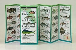 The Ultimate Guide to Fishes of Florida's Gulf Coast