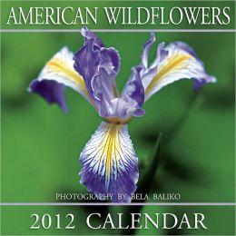 2012 American Wildflowers Wall Calendar
