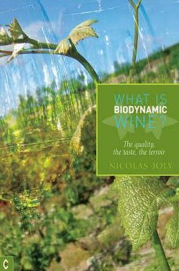 What Is Biodynamic Wine: The Quality, the Taste, the Terroir