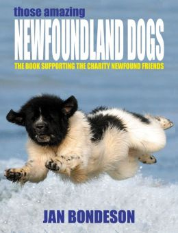 Those Amazing Newfoundland Dogs